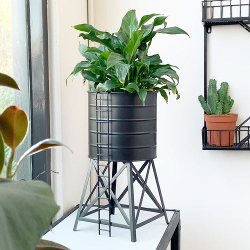 water tower metal planter with green lush peace lily white moose australian designer homewares pot planter crazy plant lady gift idea
