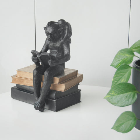 Shelf Monkey - Black