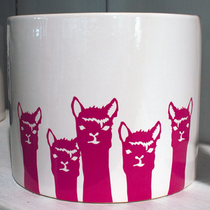 Alpaca Herd Pot | Glazed Cylinder Pot | Fuchsia