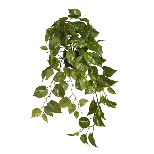 real touch artificial indoor plant pothos in pot yellow variegated leaves 70cm floral interiors fake houseplant