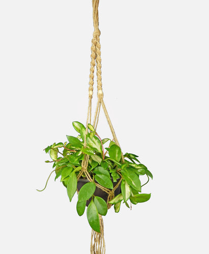 Macramé Plant Hanger/35'' long/hanging planter/hanging plant holder/flower pot hanger/Natural Hemp with wood beads/001SA07 - Saratoga Style