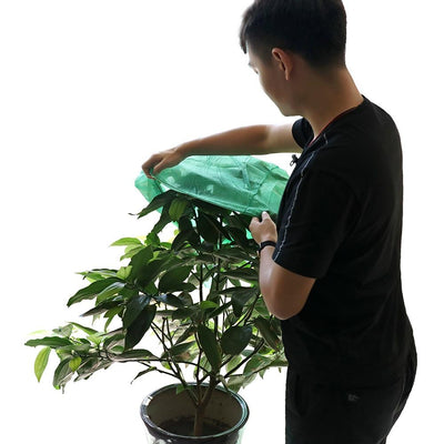 Frost Protection Fleece Plant Cover