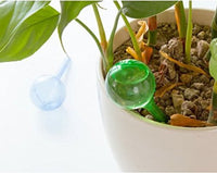 Self Watering Bulb for Plant Pot (2 Pack) - ModernKitchenMaker.com