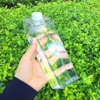 Clear Milk Carton Come with 1 Straw, 1 Brush, Great for Outdoor and Indoor Activities