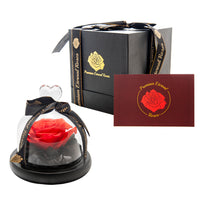 Premium Eternal Roses REAL Preserved Roses Rose Gift for Delivery - ModernKitchenMaker.com