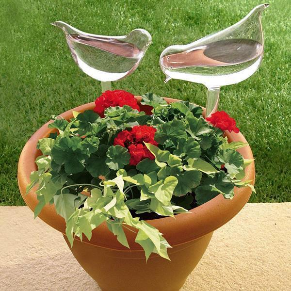 Self Watering Decorative Plant Globe (2 Piece Set) - ModernKitchenMaker.com