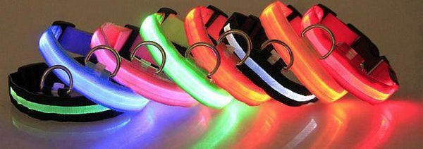 LED Pet / Dog Collar - ModernKitchenMaker.com