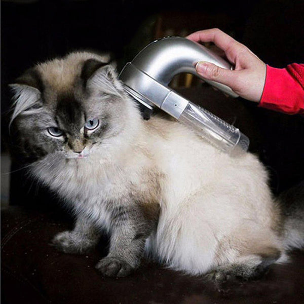 Pet Brush Vacuum - ModernKitchenMaker.com