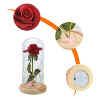 Beauty and the Beast Rose Lamp with Glass Dome and Wooden Base - ModernKitchenMaker.com