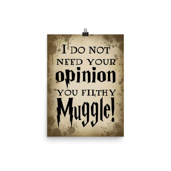 Opinionated Wizard Poster