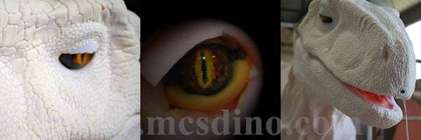 dinosaur costume eyes- skins