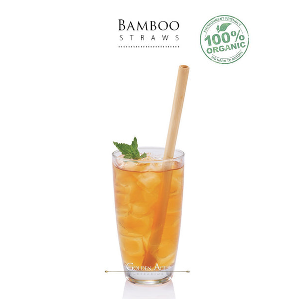 Bamboo Straws - sets of 6