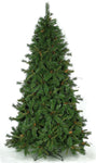 Brown Fir
