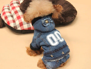 Denim Style Jacket and Jeans with Hoodie