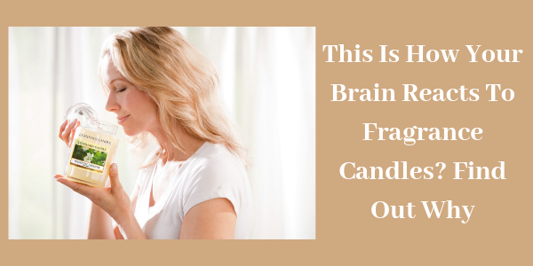 LIGHTHAUS : This Is How Your Brain Reacts To Fragrance Candles? Find Out Why-Lighthaus Candle