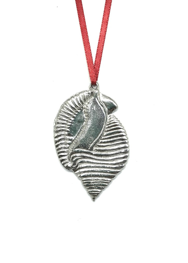 Scotch Bonnet North Carolina NC State Seashell Holiday Christmas Ornament Pewter - House of Morgan Pewter