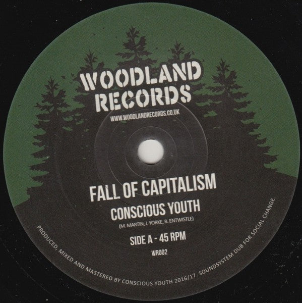 Conscious Youth (2) ‎– Fall Of Capitalism