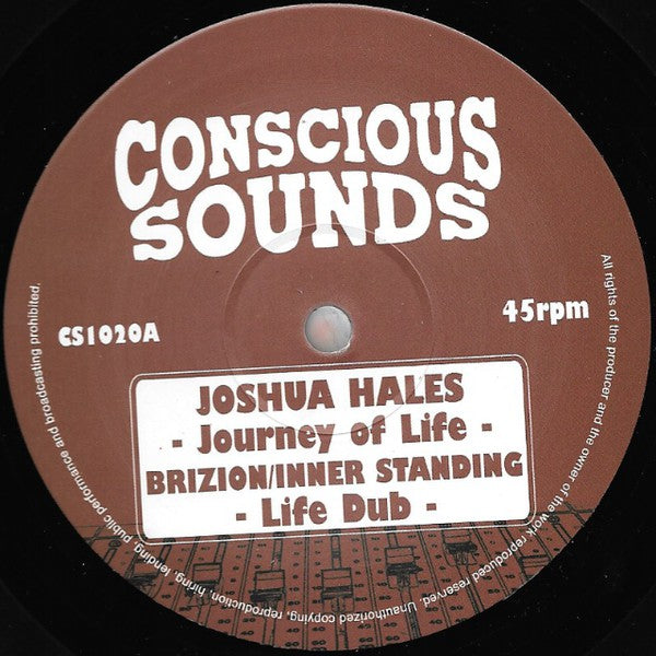 Joshua Hales ‎– Journey Of Life
