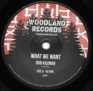 Dub Kazman ‎– What We Want