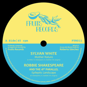 Sylvan White, Robbie Shakespeare, Earth Warrior, Delroy Melody ‎– Magnetic Buzz Riddim