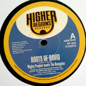 Mighty Prophet Meets The Navigator ‎– Roots Of David