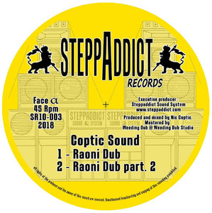 Coptic Sound, U-Man Dub ‎– Raoni Dub / Higher Soul