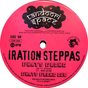 Iration Steppas ‎– Too Much War / What's Wrong