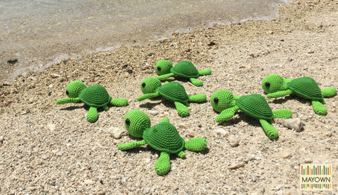 mayown turtles