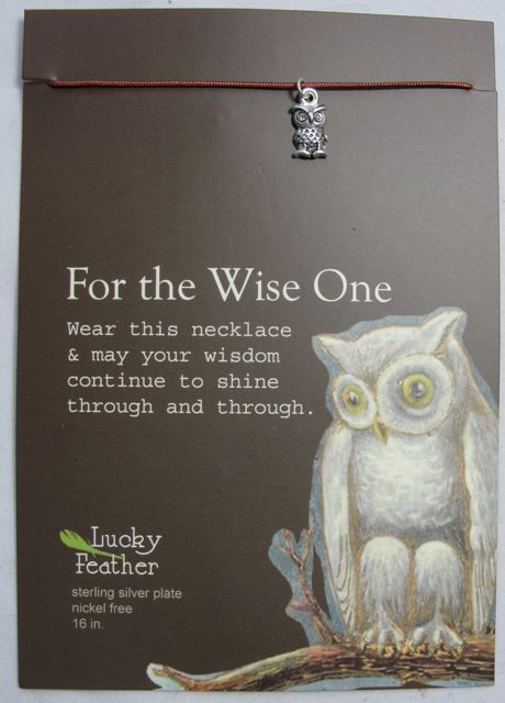 Pretty Moon Jewels Silver Owl Charm Necklace - For the Wise One