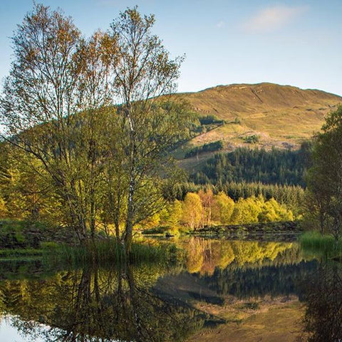 Image of The Highland Title Loch Lochan
