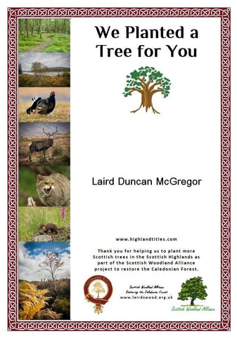 Dedicate a Tree in Glencoe Wood
