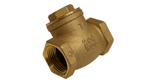 FPT x FPT - Swing Check Valves (CKG)