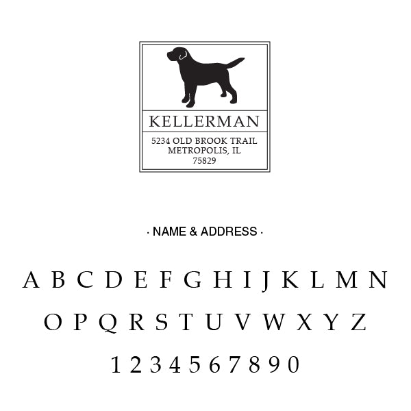 Square Return Address Dog Family Last Name Custom Designer Stamp Alphabet and Font Used