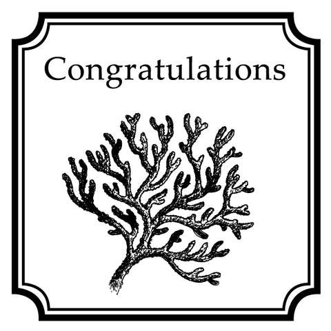 Square Salutations Congratulations Mix and Match Designer Stamp Clip from Artisan Stamp