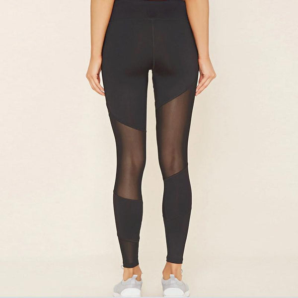 Panoramic Mesh Leggings