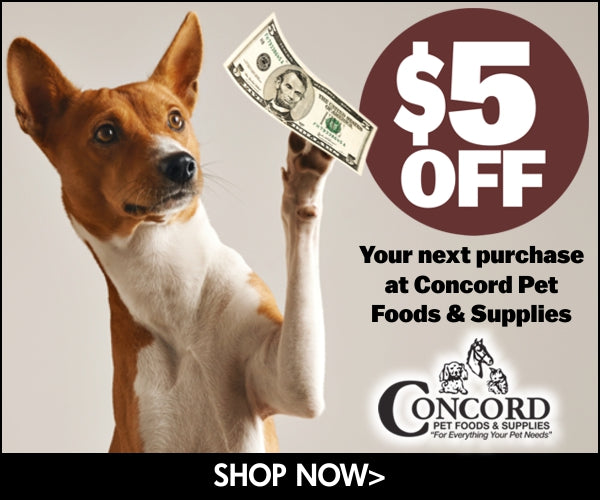 5 dollars off your next purchase coupon