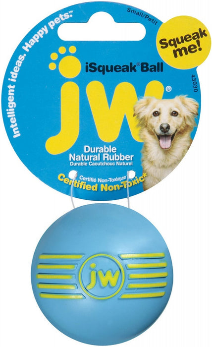 JW Pet iSqueak Ball Dog Toy