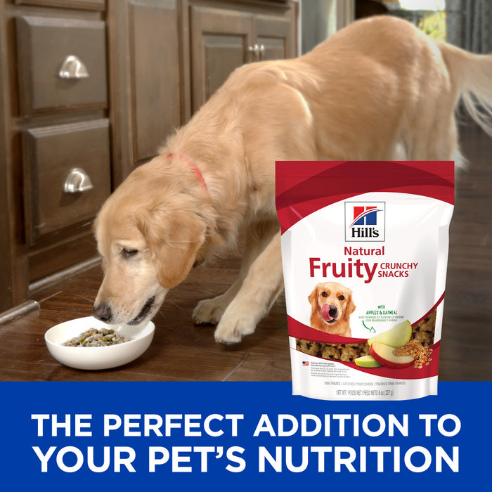 Hill's Science Diet Fruity Snacks with Apple & Oatmeal Dog Treats