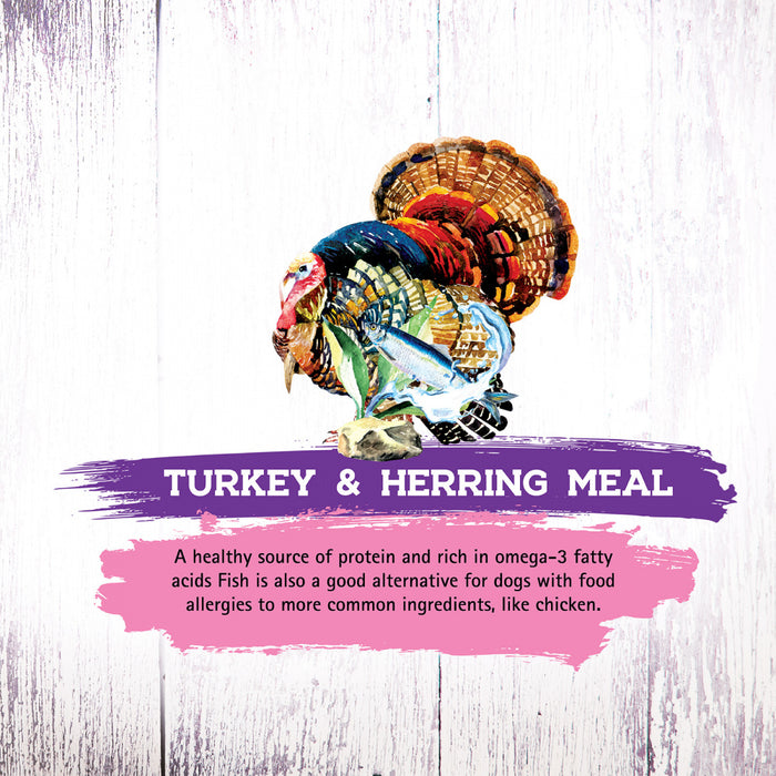 Inception Turkey & Herring Meal Recipe Dry Cat Food