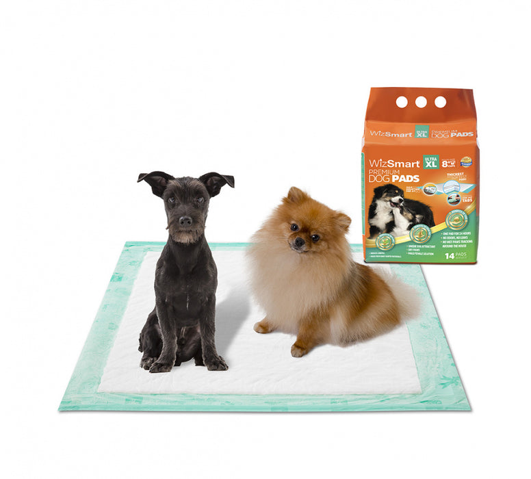 WizSmart Ultra XL All Day Dry Premium Dog Pads