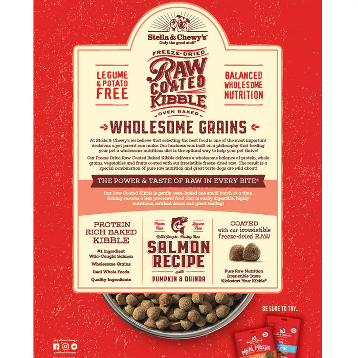 Stella & Chewy's Raw Coated Kibble With Wholesome Wild Caught Salmon Recipe Dry Dog Food