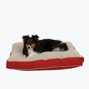 Four Season Jamison with Cashmere Berber Top Rectangle Dog Bed