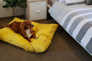 The Mano Range Linen Dog Bed