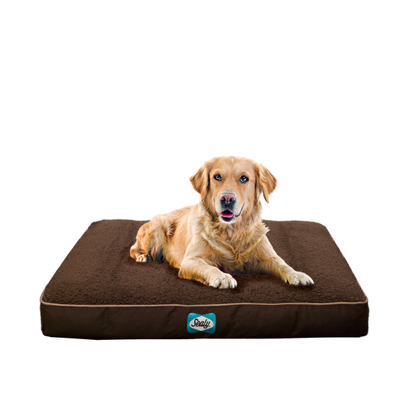 Cozy Comfy Autumn Brown Orthopedic Memory Foam Dog Bed