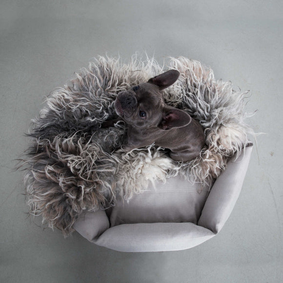Hex Cushion Dog Bed - Fog by Velvet Hippo