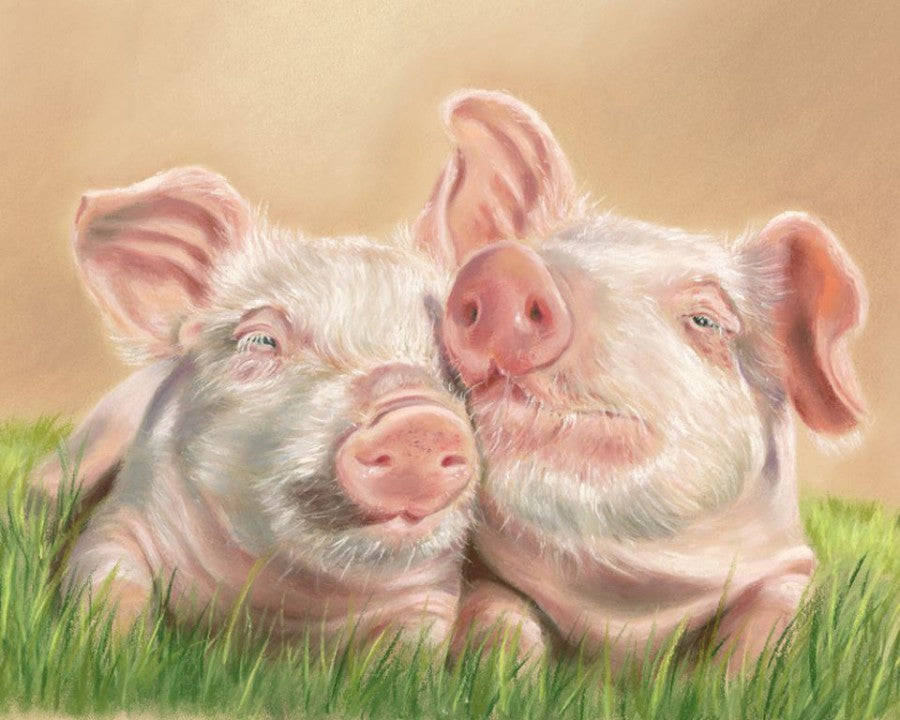 Snout'n About - Fine art giclee print - Animal Kingdom, Cute & Funny, Farmyard, Pigs