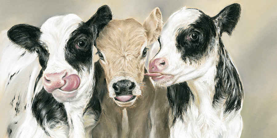 Cow's lick - Fine art giclee print - animal, animals, Cattle, Cow, Cows, cute, Family, Farm, Farmyard, friendship, Painting, youth
