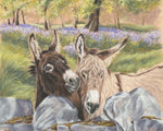 Hee Haw - Fine art giclee print - animals, cute, donkey, Farm, friendship, Ireland, love, nature