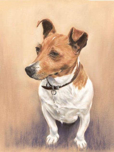 Jack the lad - Fine art giclee print - animal, cute, dog, doggo, dogs, pet