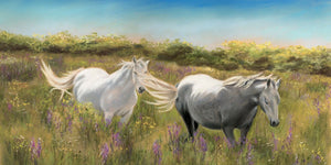 Thelma & Louise - Fine art giclee print - Animal, Connemara, Couple, Friendship, Galway, Horses, Love